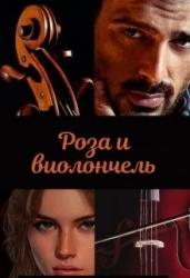 Роза и виолончель (СИ)