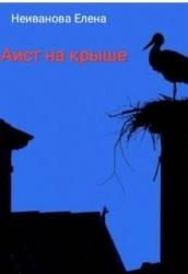 Аист на крыше (СИ)