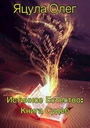 Книга Судеб (СИ)